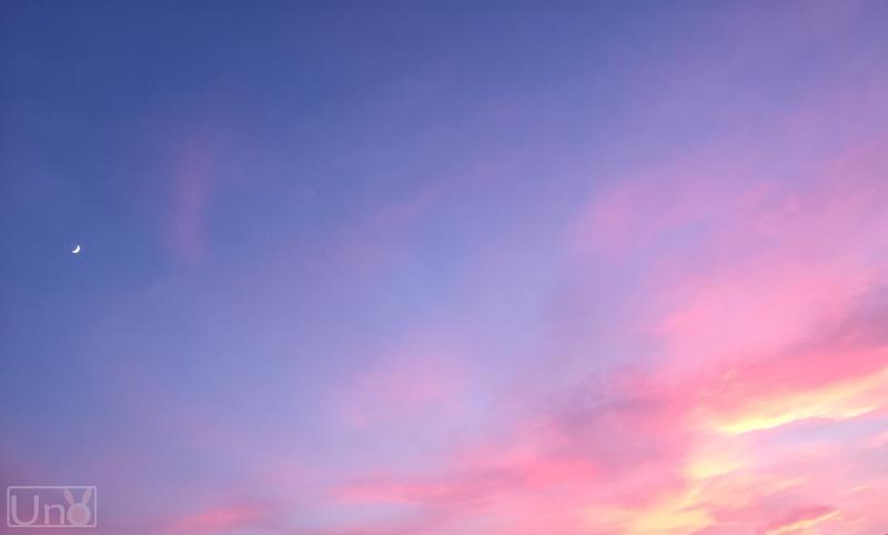 夏の夕日の写真