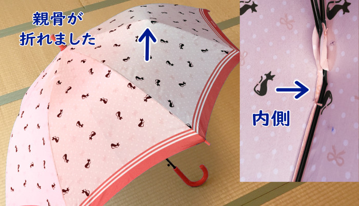 壊れた傘の写真