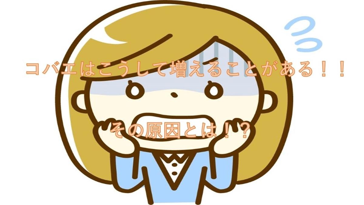 f:id:unyanzuwei:20210406085400j:plain