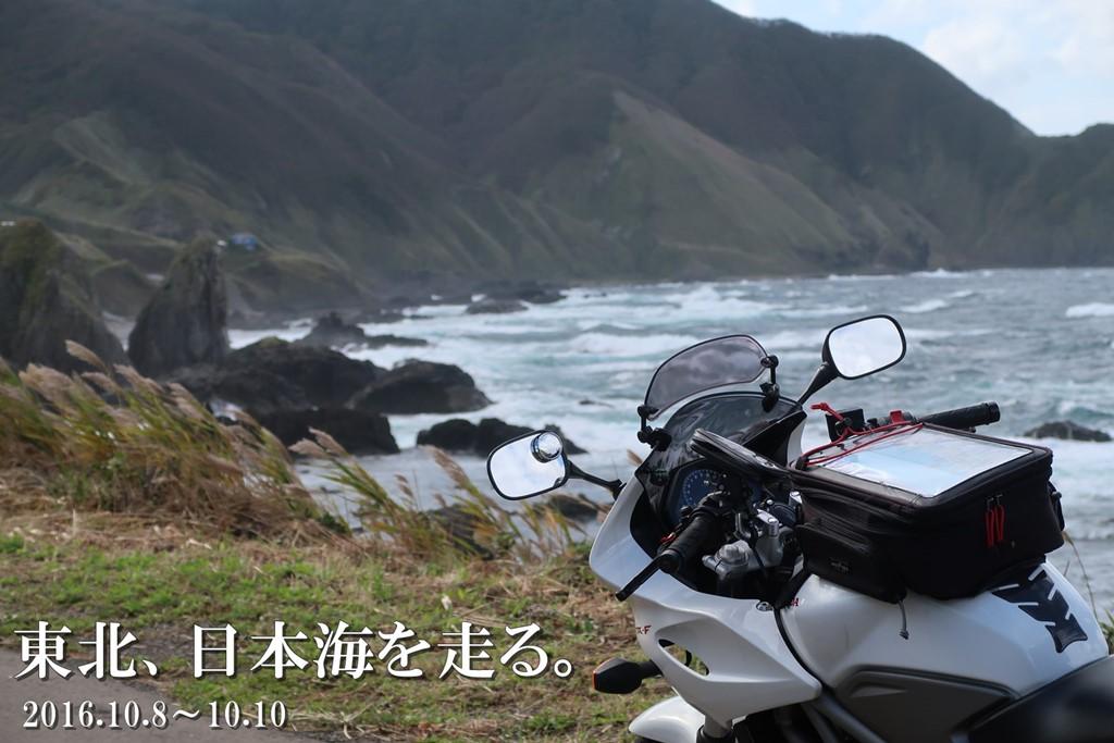 f:id:unyora-d:20170111034436j:plain