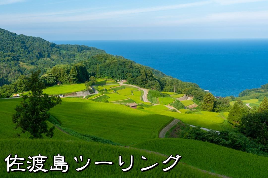 f:id:unyora-d:20191125001054j:plain