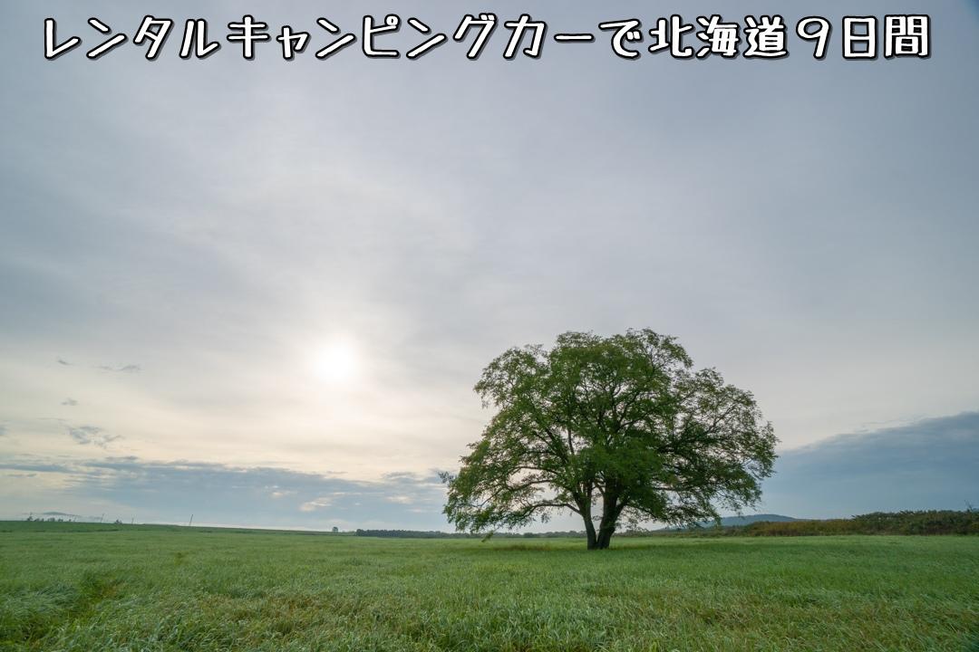 f:id:unyora-d:20210111220941j:plain