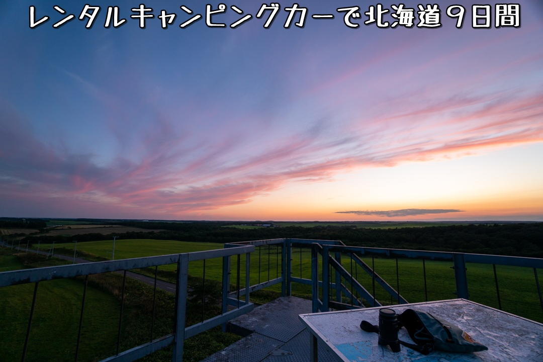 f:id:unyora-d:20210117005337j:plain