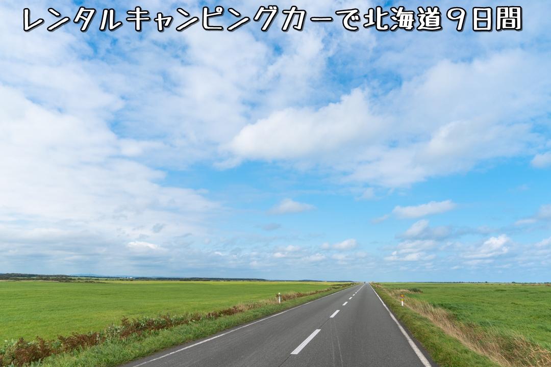 f:id:unyora-d:20210204002401j:plain