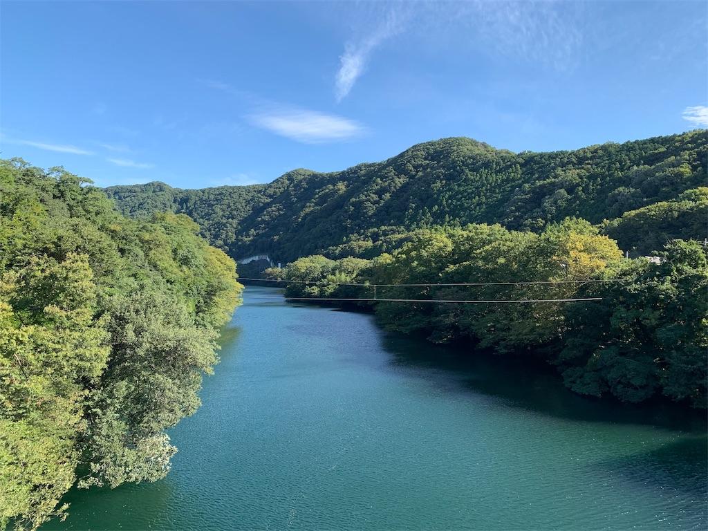 埼玉県の山林