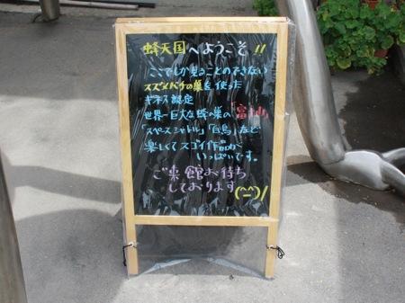 s_IMG_0587