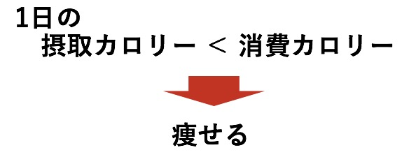 f:id:urahara-hara:20190301223142j:plain