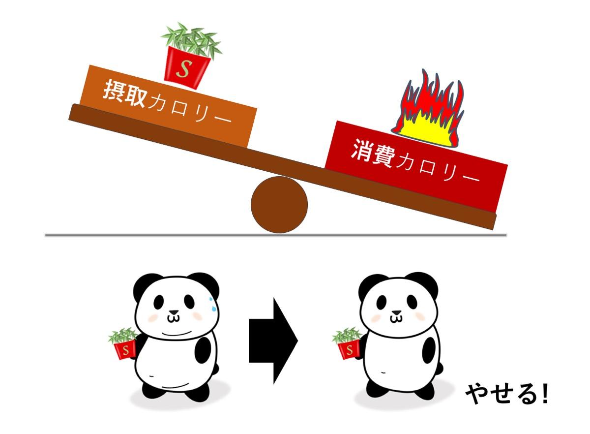 f:id:urahara-hara:20200107124553j:plain