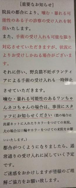 f:id:urakawa-pet:20190930085318j:image