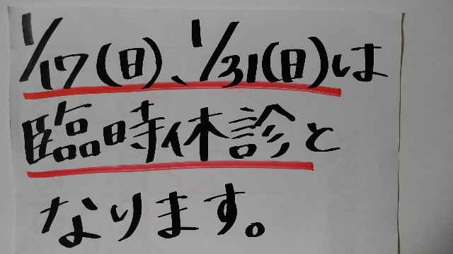 f:id:urakawa-pet:20210106211000j:image
