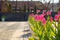 f:id:uralic:20120111011529j:image:medium