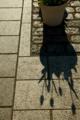f:id:uralic:20120214003206j:image:medium
