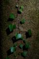 f:id:uralic:20120313011824j:image:medium