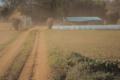 f:id:uralic:20120313011825j:image:medium