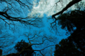 f:id:uralic:20120317012853j:image:medium