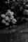 [花][モノクロ]