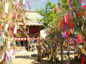 七夕神社で恋愛成就!?福岡にある織姫が祀られる恋愛成就の神社とは?