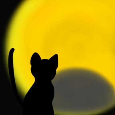 2016年9月の満月は今年最後の半影月食と重なる日!心の傷を手放しませんか?