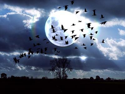 【2016年10月16日の満月】牡羊座の満月は自分らしく新たなスタートを切る時へ