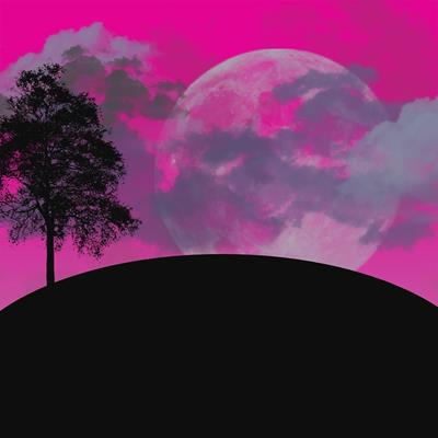 下弦の月は新月に向けてのゆるやかなスタートを切るべき時!2月26日の金環日食の新月に向けてすること