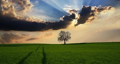 環境と新しい人生