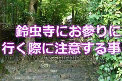 鈴虫寺の参拝時期注意点