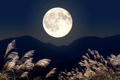 牡牛座の満月の日の今日は「ワンランク上の選択」をする日にしませんか?