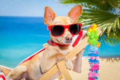 日光浴でネガティブな気持ちとさよなら!冬こそ太陽の光を浴びて開運する方法