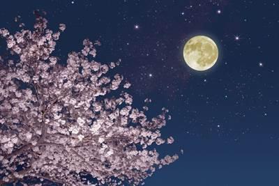 【2018年3月31日のブルームーンの満月】天秤座の満月は自分の中のバランスを考える時