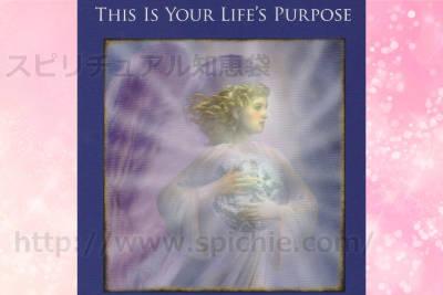 左のカードを選んだあなたへのメッセージ this is your life purpose