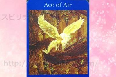 右カードを選んだあなたへのメッセージ 【Ace of air】 風のエース