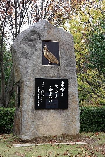 f:id:urano_kazumi:20201119224537j:plain