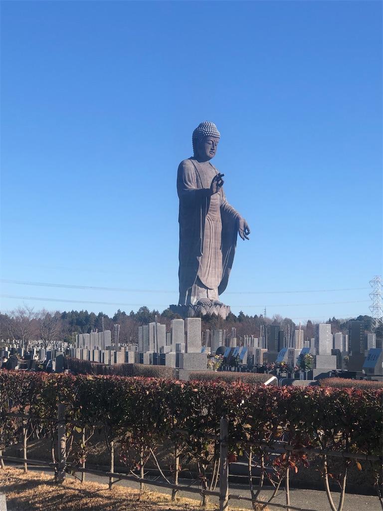 f:id:urashimamimi:20200102174237j:image