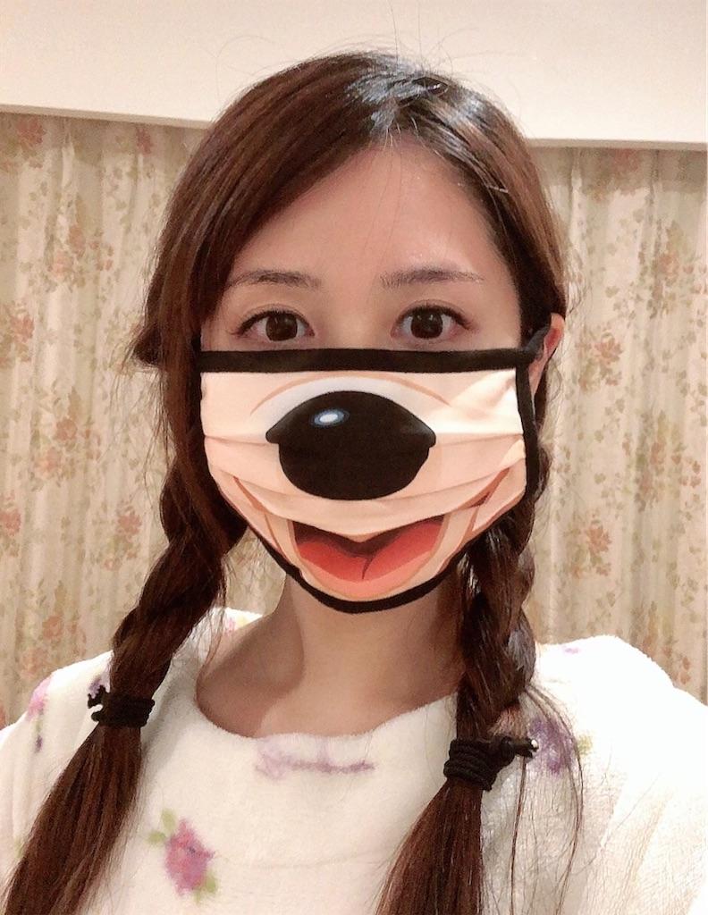 f:id:urashimamimi:20210116122908j:image