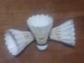 アハ カップ バドミントン (2007.10.20)