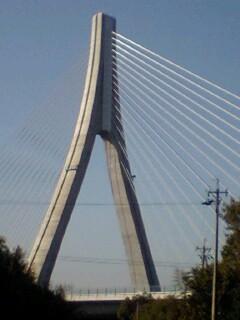 081123 大橋梁 (5) 13:01 斜張橋で ある 矢作川橋梁