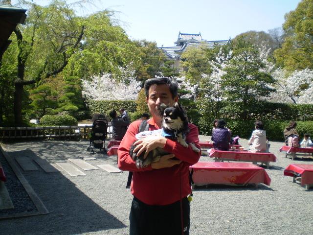110412-57 岡崎 公園