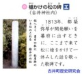 石碑 エ 槍かけの松の 碑 (古井町歴史研究会) 583-523