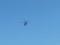 20130920 11:13:36 愛知県警察航空隊 ヘリコプター あかつき