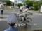20140607 こども自転車大会 (9)