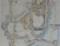 20140907 13.43.18 岡崎城の平面図 (てまえがきた)