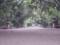 20150723_140028 熱田神宮