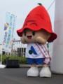 20151101 すこやか交通宣言フェスタ - きぐるみ (4) 480-640