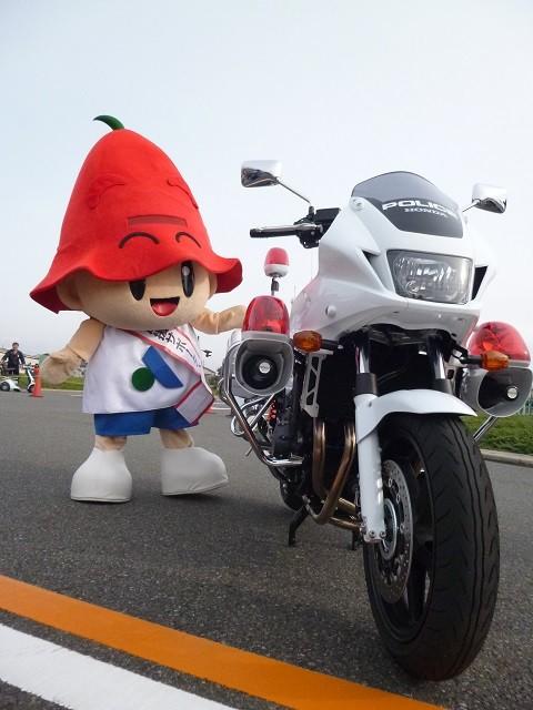 20151101 すこやか交通宣言フェスタ - きぐるみ (5) 480-640