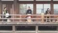 20151108_094459 本証寺まつり - 咲楽(さくら)(15) 1280-720