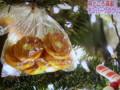 2015.12.24 デンパークのクリスマス♪ (9)
