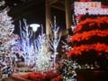 2015.12.24 デンパークのクリスマス♪ (11)