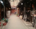 2016.3.8 写真展と美術展 - ろーじ(三上家)535-425