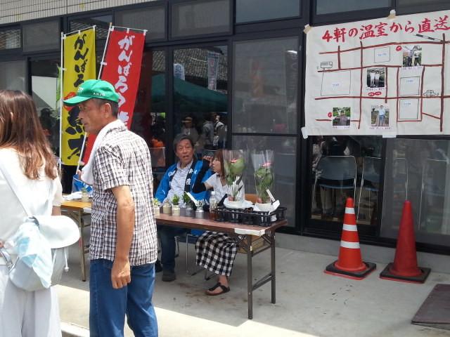20160529_113603 古井町ふれあいひろば (33) 観葉植物