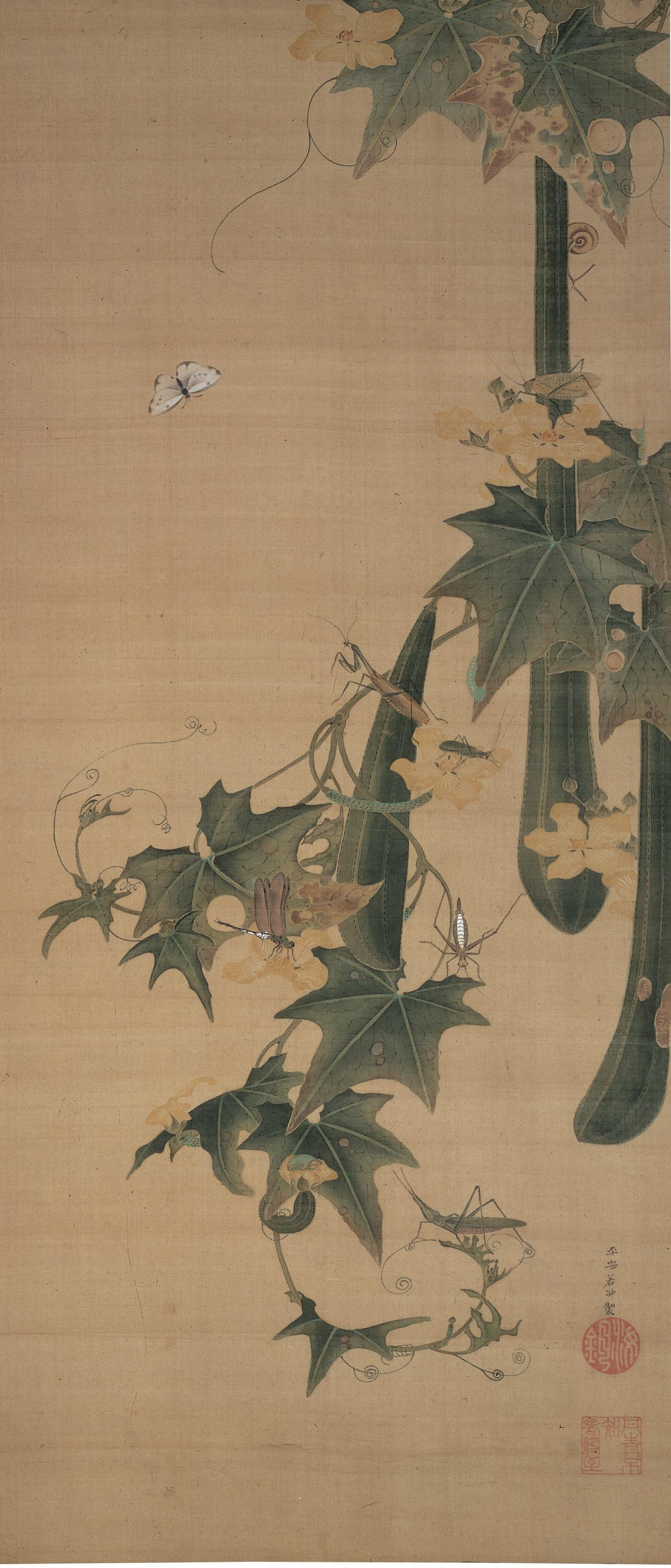 伊藤若冲 - 糸瓜群虫図(へちまぐんちゅうず)